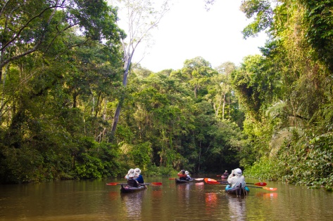 amazon-kayaking-trip-paddling-group